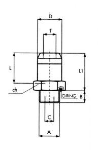 TERMINALE DIRITTO T6X4 M12X1,5